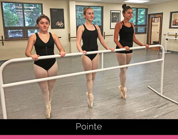 IDA, Institute of Dance Artistry, located in Fort Washington and Plymouth Meeting PA, teaches different dance styles including, Pointe.